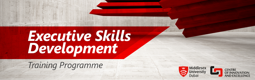 Executive Skills Development