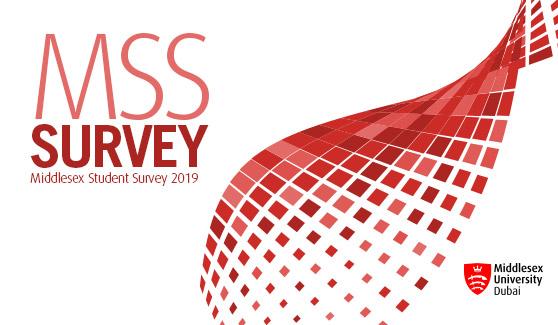 MSS Survey