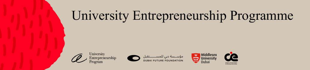 University Entrepreneurship Programme